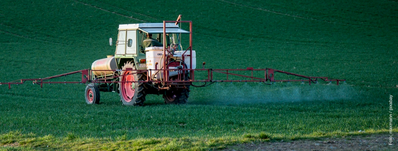 Glyphosat-Ausstieg: Grüne in Nenndorf fordern konkrete Maßnahmen